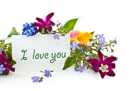Strauß von Frühlingsblumen auf weißem Hintergrund Standard-Bild - 13401047