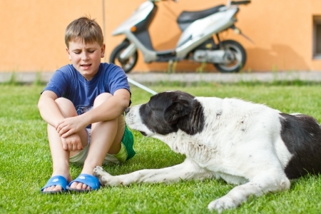 the boy with his dog sitting on grass Stock Photo - 13607467
