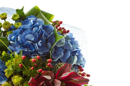 beautiful bouquet of Hydrangeas on a white background photo