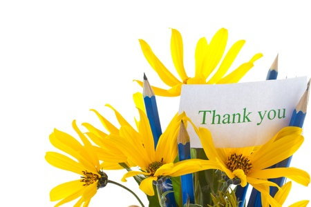 caes: Flores de oto�o con el libro y l�pices sobre un fondo blanco Foto de archivo