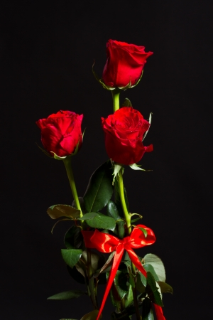bouquet of red roses on a black background photo