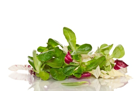 fresh salad with arugula on a white background photo
