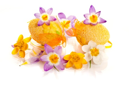 Easter eggs with spring crocuses on a white background photo
