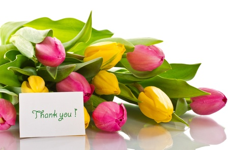 thank you card: Beautiful bouquet of tulips on a white background Stock Photo