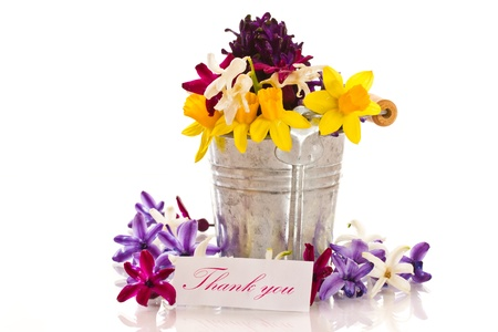 hyacinth flowers with gratitude on a white background photo