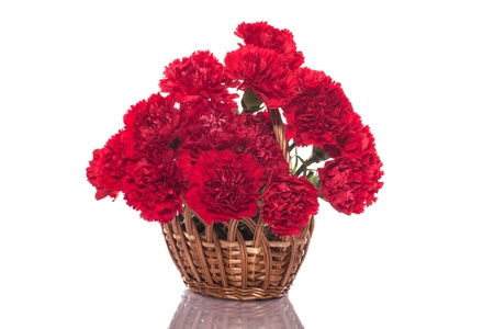 bouquet of red roses on a white background photo