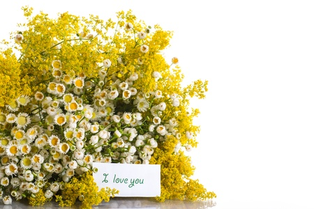 goldenrod: Summer bouquet of wild flowers on a white background Stock Photo