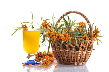 sea buckthorn tea in a cup on a white background photo