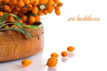 branch of ripe sea-buckthorn berries on a white background Stock Photo