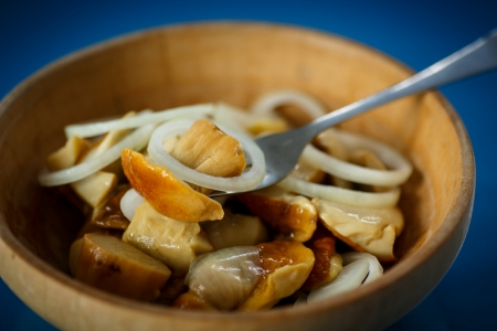 marinated mushrooms and onions in a plate on a blue background photo