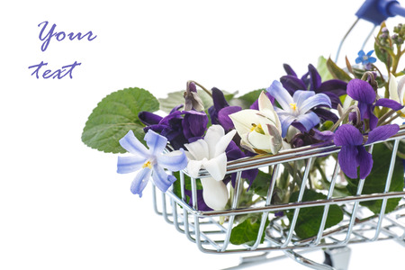 beautiful bouquet of spring flowers on a white background photo