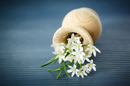 beautiful bouquet of white flowers on a wooden table photo