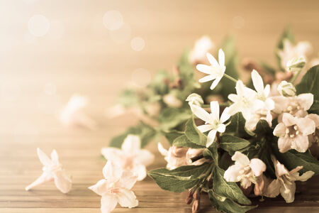 Weigel beautiful flowers on wooden table. filter effect antique photo