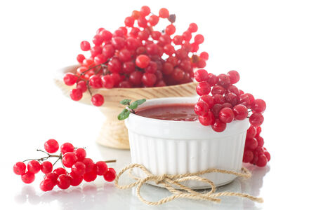 guelder: guelder rose jam with fresh sweet viburnum on a white background