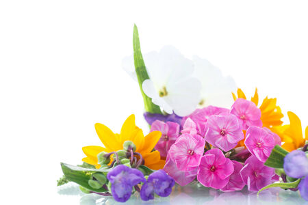 floral bouquet of different flowers on a white background photo