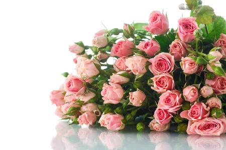白地にピンクのバラの美しい花束
