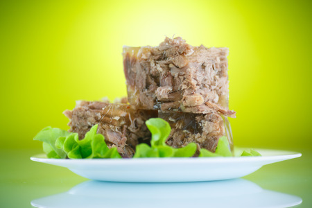 meat in aspic with salad leaves on a green background photo