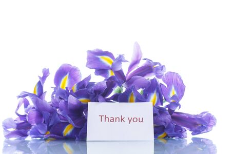 beautiful bouquet of flowers irises on a white background photo