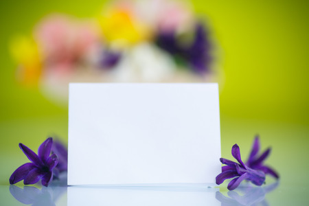 beautiful bouquet of spring flowers on a green background photo
