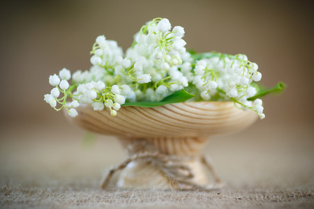 valley's: bouquet of lily of the valley flowering in the table of burlap Stock Photo
