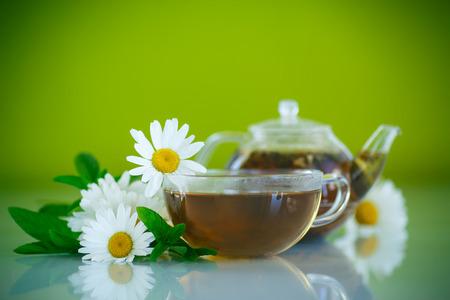 chamomile tea: chamomile tea in glass teapot on green background Stock Photo