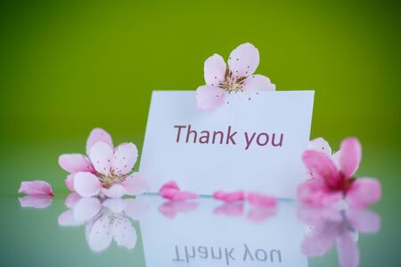many thanks: Peach pink flowers on a green background Stock Photo