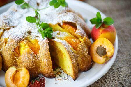 powdered sugar: Sponge cake with apricot and powdered sugar Stock Photo