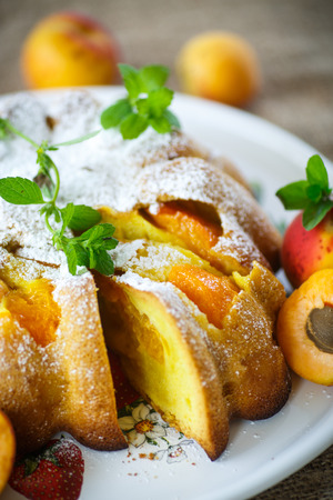 Sponge cake with apricot and powdered sugar Stock Photo