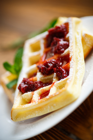 viennese: Viennese waffles with powdered sugar on a plate Stock Photo