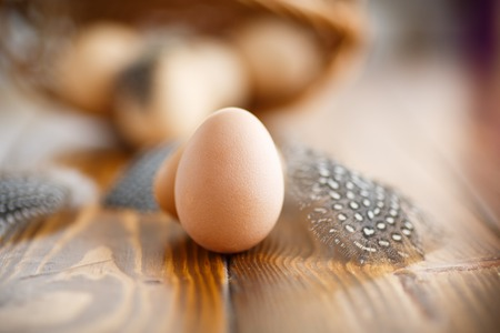 guinea fowl: guinea fowl eggs and feathers on a wooden table