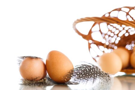 guinea fowl: guinea fowl eggs and feathers on a white background Stock Photo