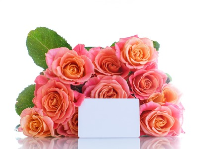 gift card: bouquet of pink roses isolated on white