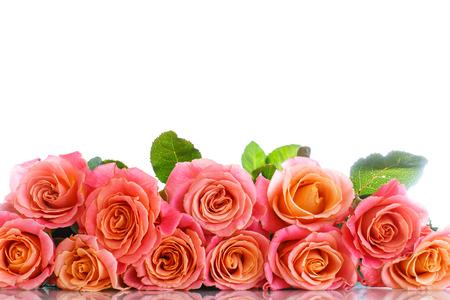 Boeket van roze rozen op wit wordt geïsoleerd Stockfoto - 55210694