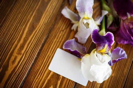 purple irises: beautiful white with purple irises on a wooden table