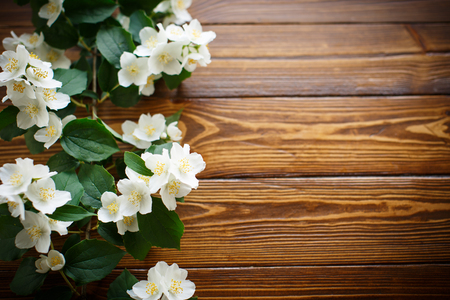 White flowers of jasmine on brown wooden background stock photo stock photo white flowers of jasmine on brown wooden background mightylinksfo