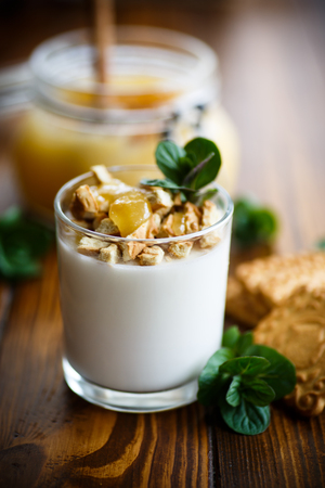 greek pot: Greek yoghurt with honey and biscuits
