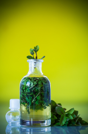Mint syrup in a glass bottle Stock Photo