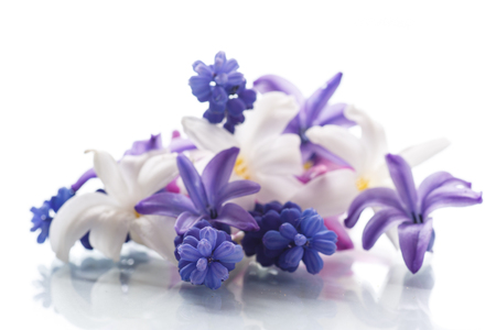 春の花の美しい花束