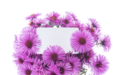 bouquet of beautiful purple chrysanthemums