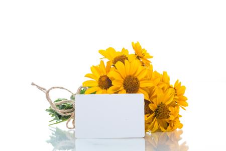 白い背景の上の黄色のヒナギクの花束