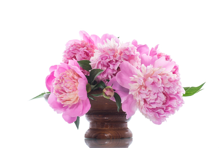bouquet of blooming peonies on white background