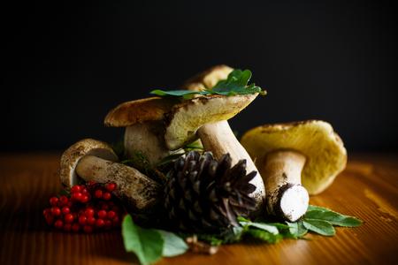 white forest natural mushrooms on a wooden table Reklamní fotografie