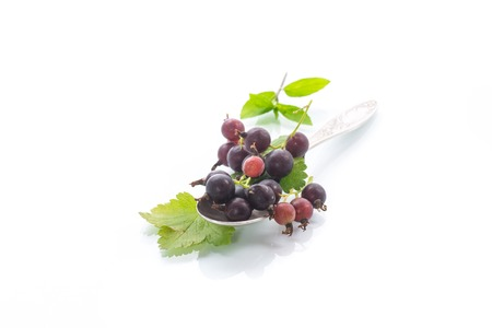 ripe berries black currant isolated on white background
