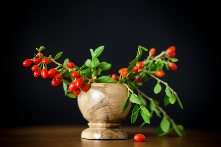red ripe goji berry on a branch isolated on a black background Stok Fotoğraf