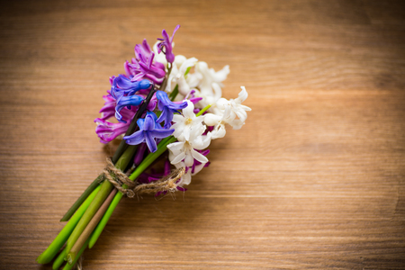 spring beautiful different color flowers of hyacinth 写真素材