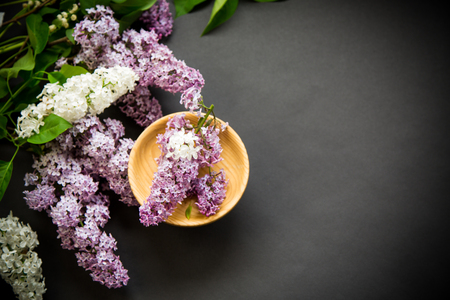 beautiful spring branches of lilac on a black Фото со стока - 122687125