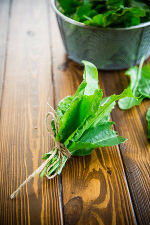 bunch of organic fresh green sorrel, on a wooden table.