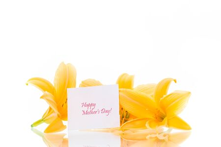 summer blooming flowers of yellow lily isolated on white Stockfoto