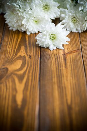bouquet of white chrysanthemums on wooden table