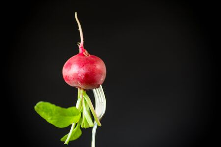 fresh organic red radish with leaves on black background